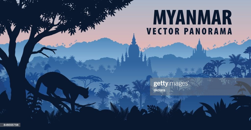 vector panorama of Myanmar with clouded leopard in jungle rainforest