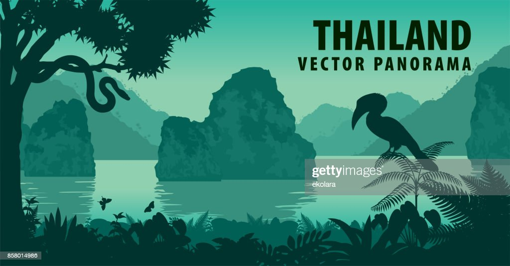 vector panorama of Thailand with great hornbill and python near jungle beach