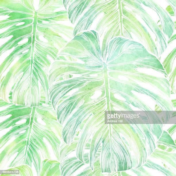 vector philodendron leaf seamless pattern in watercolor isolated on white - tropical bush stock illustrations