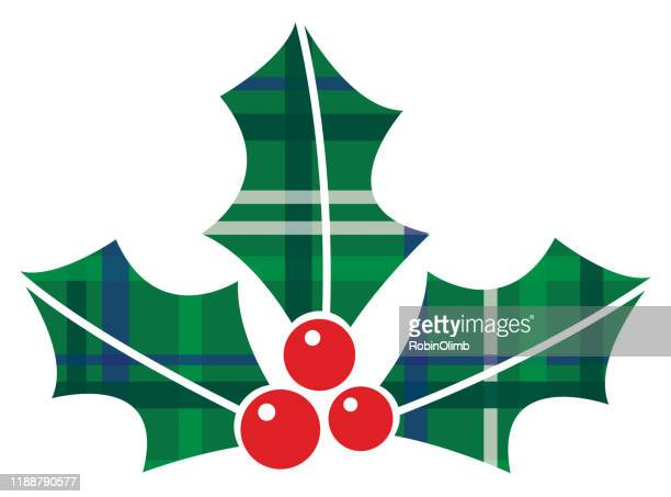 vector plaid holly icon 2 - what color are the berries of the mistletoe plant stock illustrations