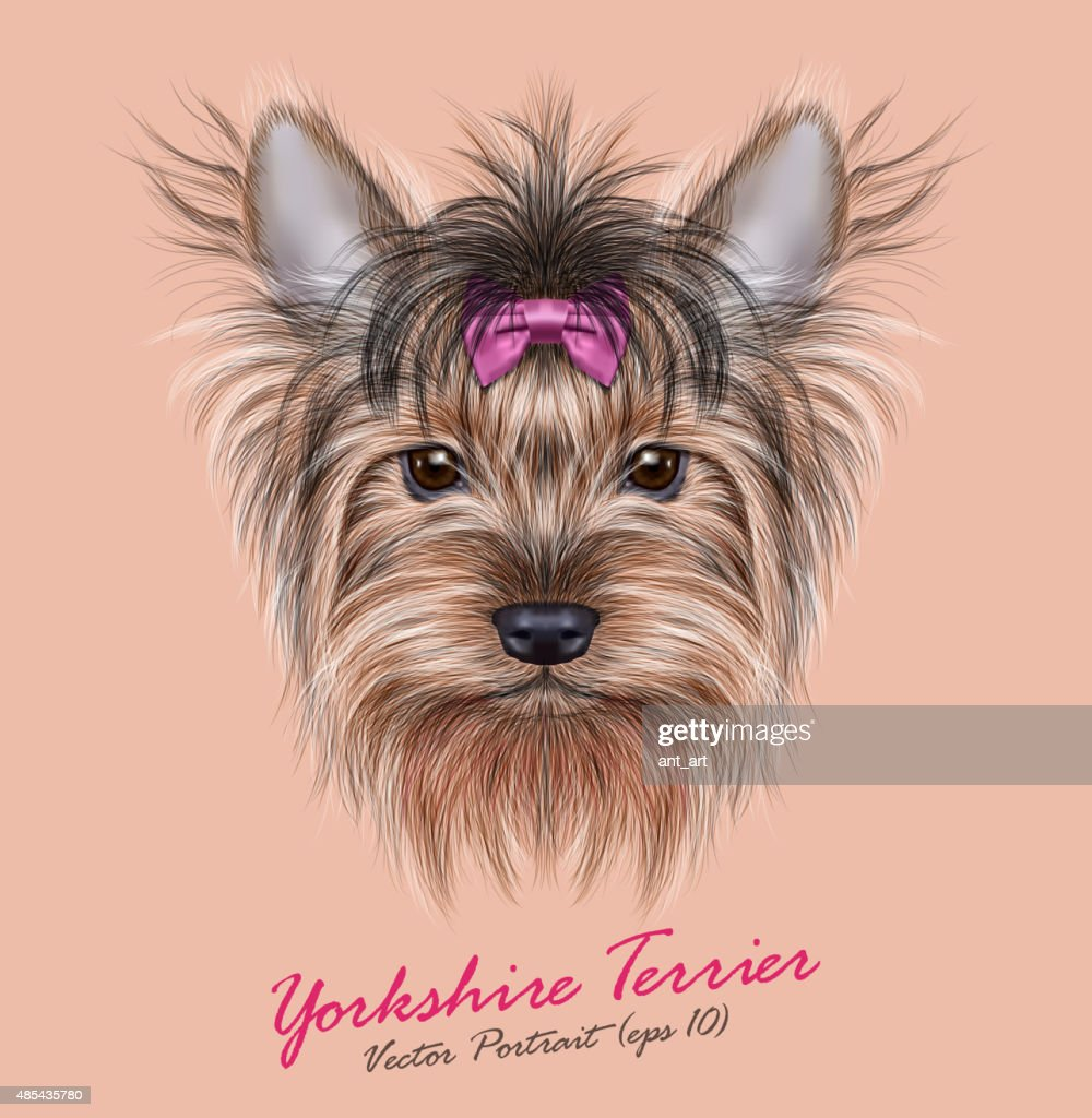 Vector Portrait of a Domestic Dog