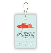 Vector price tag with aquarium fish and lettering.