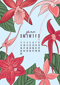 Vector printable A4 size 2019 calendar template for june. Jungle flowers and leaves contrast illustration template. Abstract nature-inspired shapes orchid collection, botanical sketch.