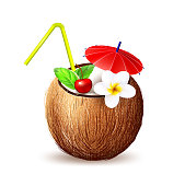 Vector realistic coconut exotic fruit 3d