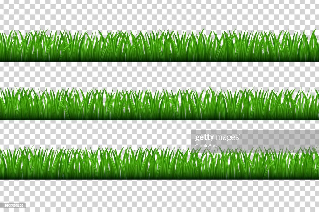 Vector realistic isolated grass borders for decoration and covering on the transparent background. Concept of meadow, field and nature.