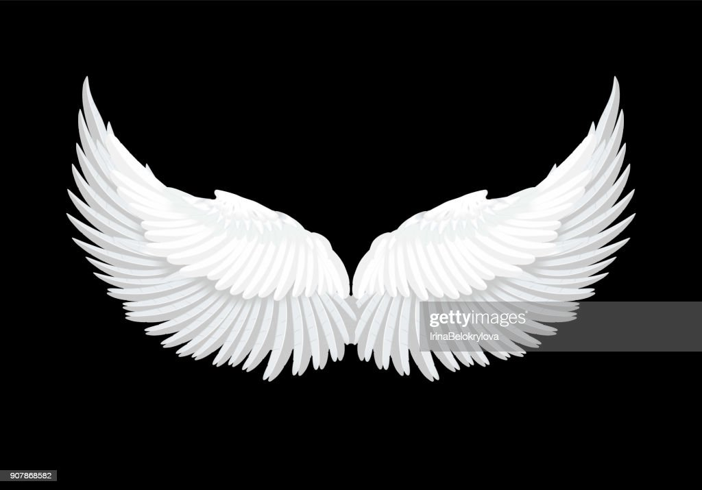 Vector realistic white angel wings