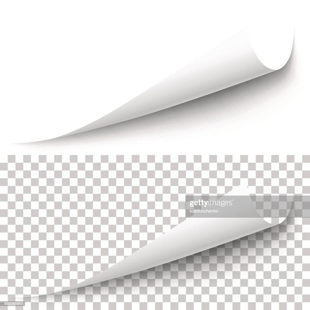 Vector realistic white paper corner