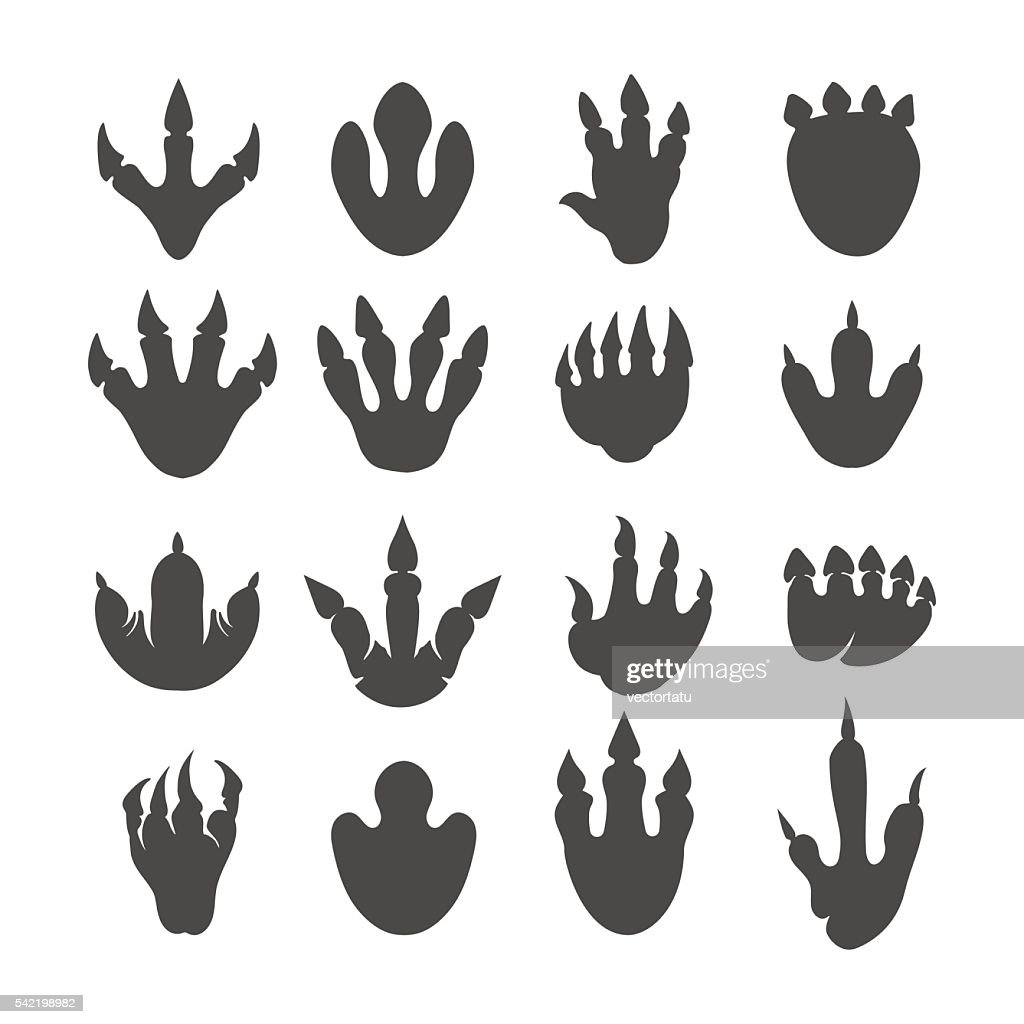 Vector reptile footprints or dinosaur tracks