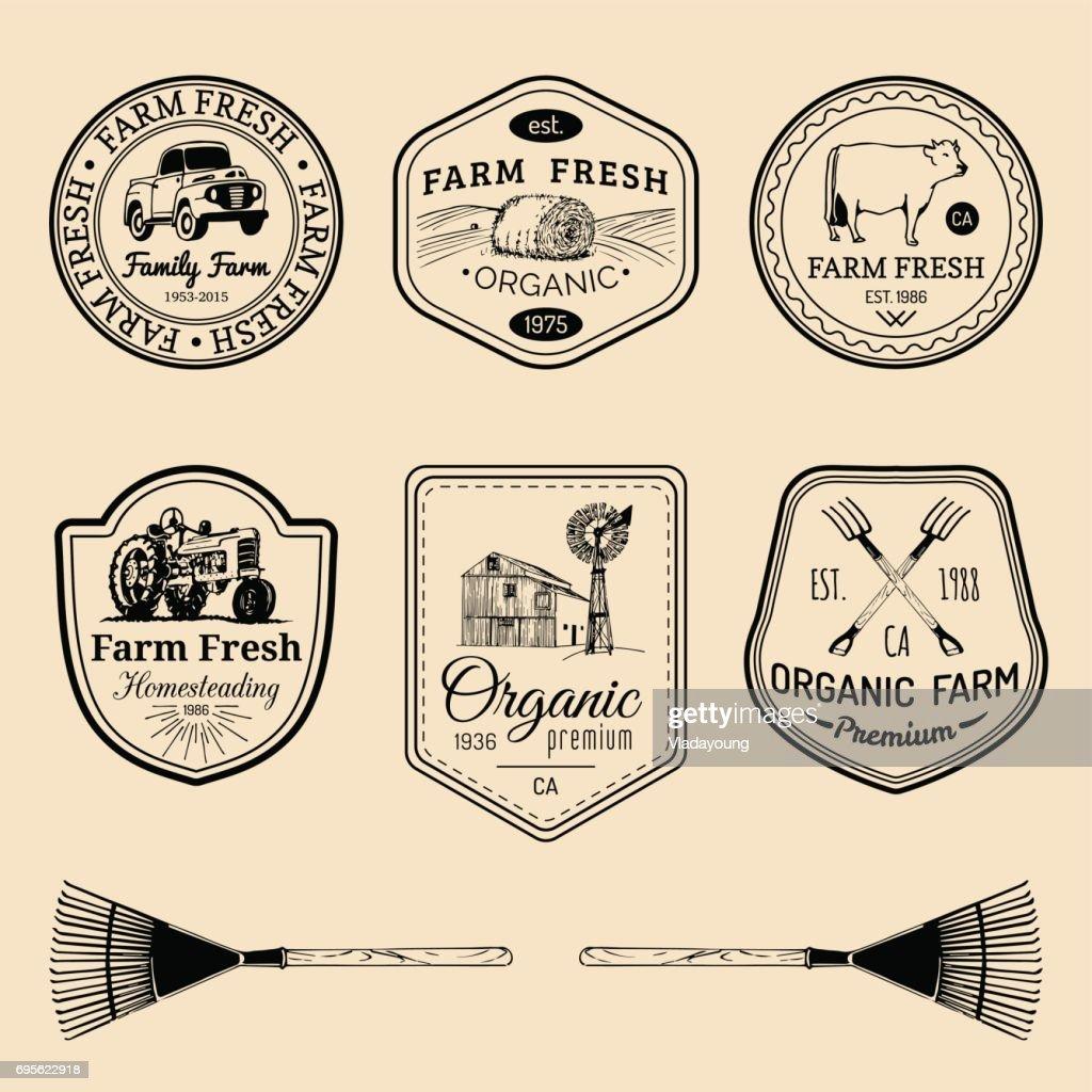 Vector retro set of farm fresh badges. Vintage labels with hand sketched agricultural equipment illustrations.