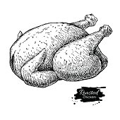 Vector roasted whole chicken. Engraved food illustration.