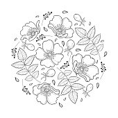 Vector round composition with outline Dog rose or Rosa canina, medicinal herb. Ornate flower, leaf and hip isolated on white background.