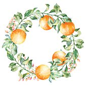 Vector round frame of watercolor orange and flowers.