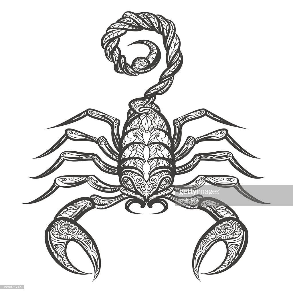 Vector scorpion icon
