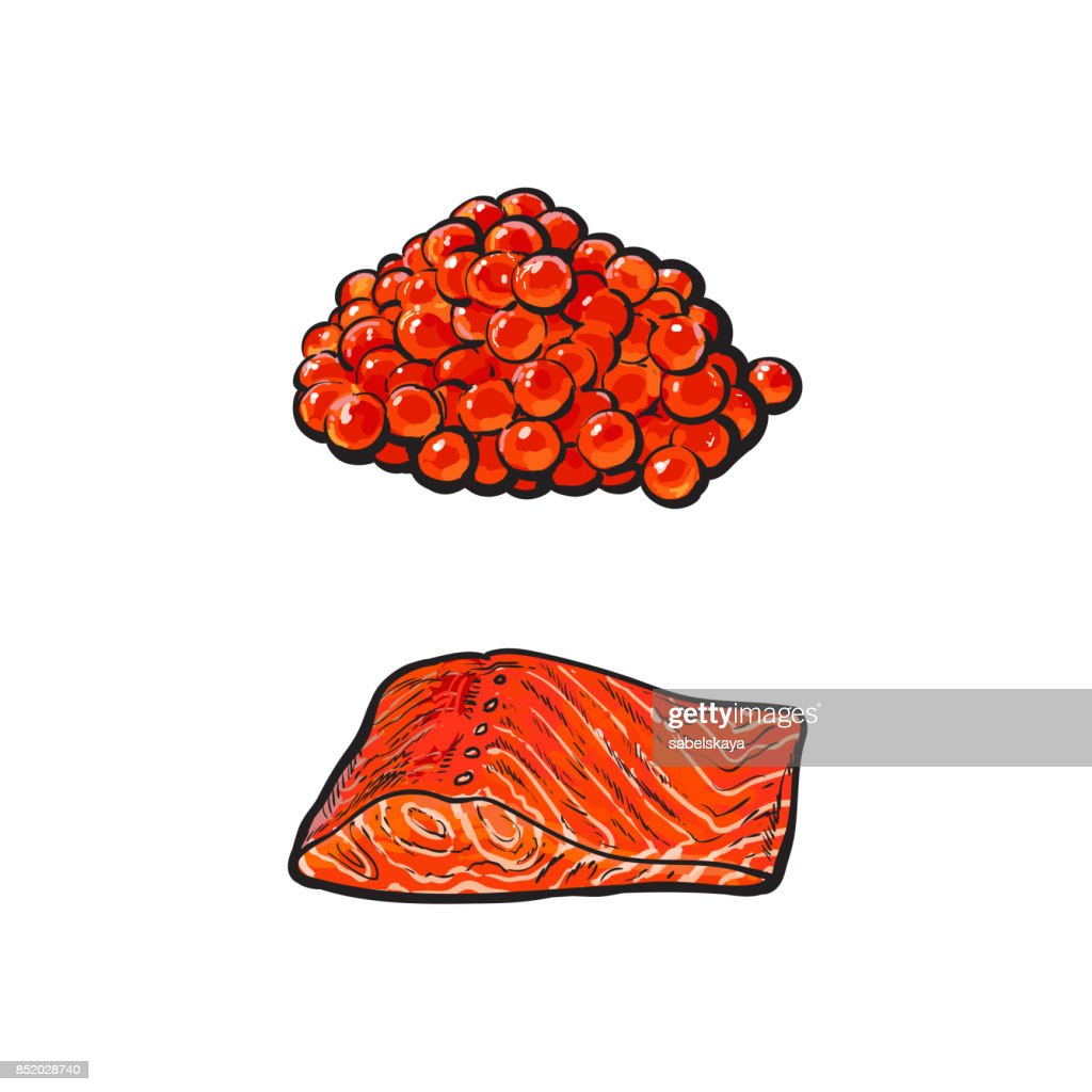 vector sea red salmon fish meat fillet, caviar set