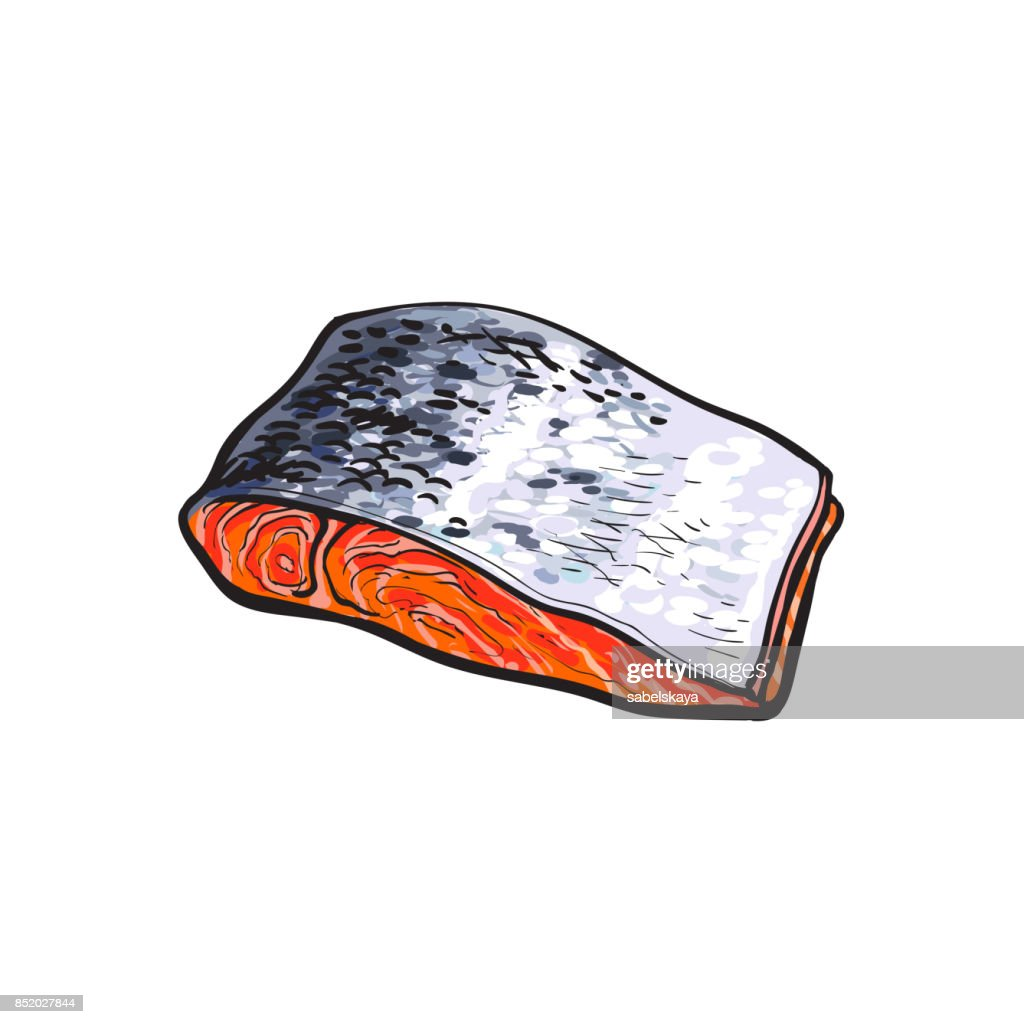 vector sea red salmon fish meat fillet Isolated