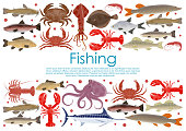 Vector seafood fishing poster of fresh fish