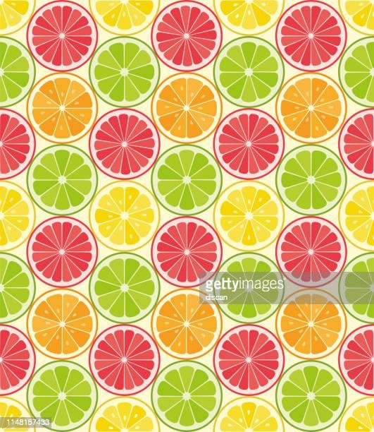 vector seamless pattern from citrus slices. orange, lemon, lime, grapefruit slices. summer background. - citrus fruit stock illustrations, clip art, cartoons, & icons