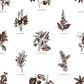 Vector seamless pattern with hand drawn poisonous plants illustration.
