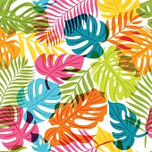 Vector seamless pattern with multicolor palm tree leaves. Summer tropical background.