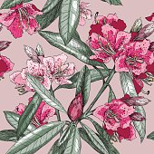 Vector Seamless pattern with Oleander flower