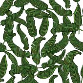 Vector seamless pattern with tropical banana leaves