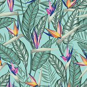 vector seamless tropical bird of paradise plant pattern with leaves