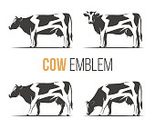 Vector set of a stylish spotted holstein cows. Emblem, icon, label designs.