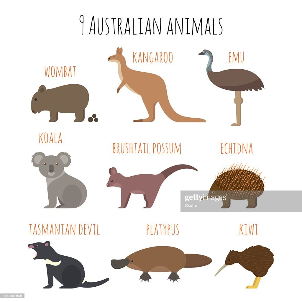 Vector set of Australian animals icons.