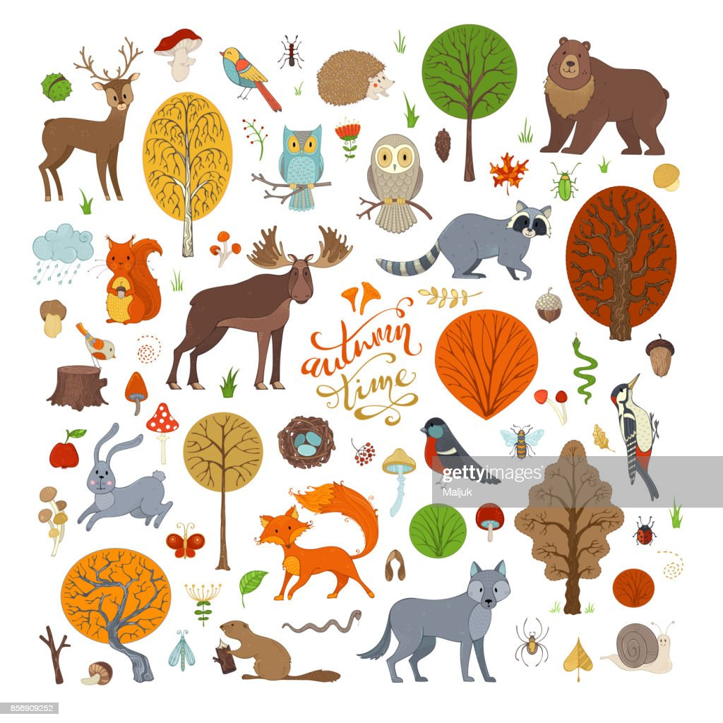 Vector set of autumn forest trees and animals.