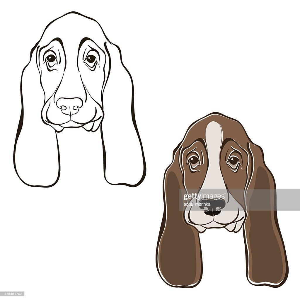 Vector set of  basset hound's face.