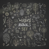 Vector set of chalk autumn trees, animals, birds and insects on blackboard background.