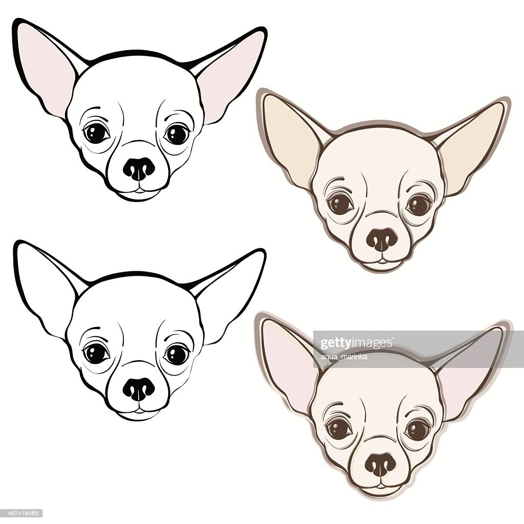 Vector set of  chihuahua's face.