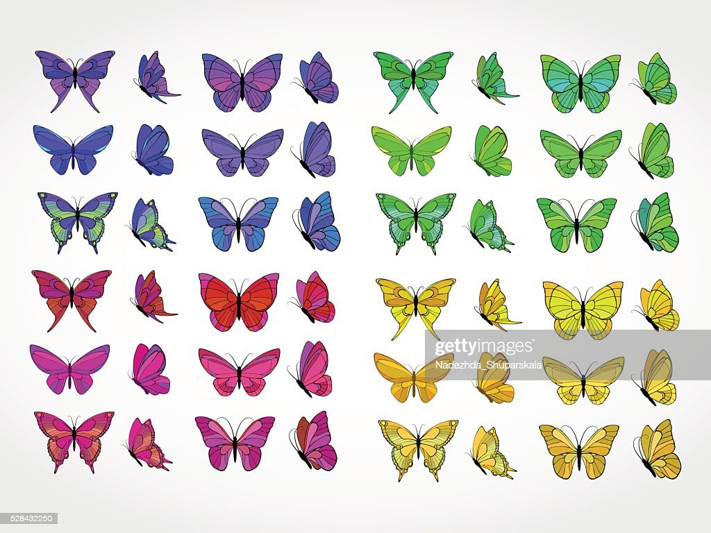 Vector set of colored butterflies