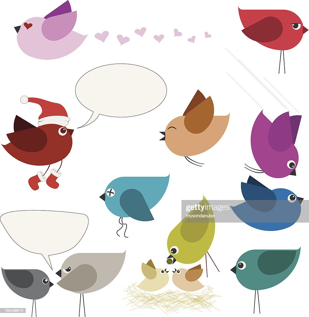 vector set of colorful bird illustrations