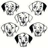 Vector set of  dalmatian's face, isolated element for design.