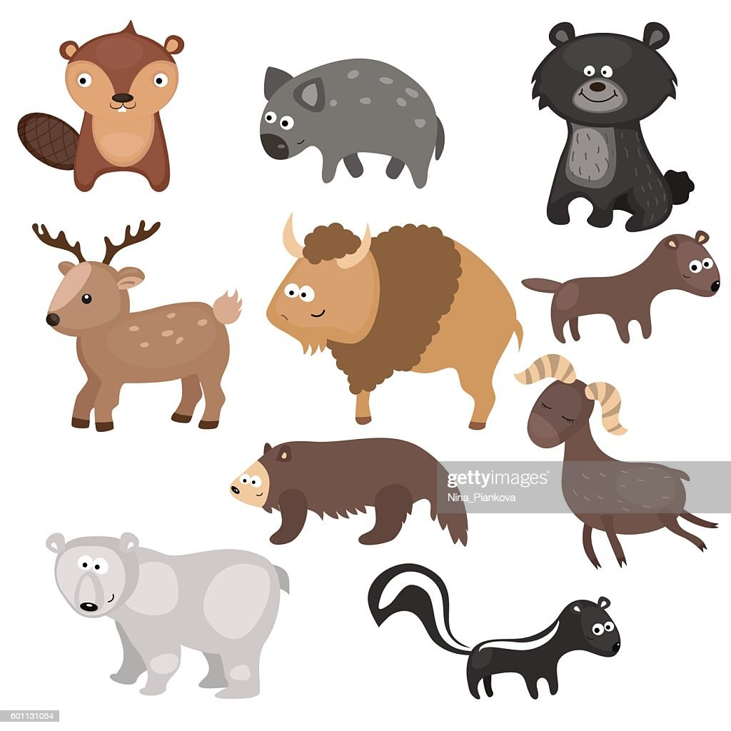 Vector set of different animals of North America.