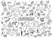 Vector set of Different Hand Drawn Autumn Design Elements. Vector Autumn Doodle Illustration. Autumn Doodles. Coloring book. Leaves, curls, mushrooms, hedgehog, chestnut