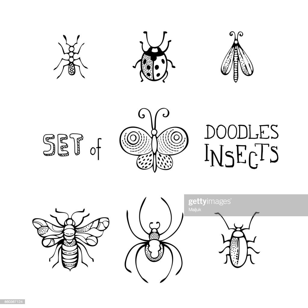 Vector set of doodles insects.
