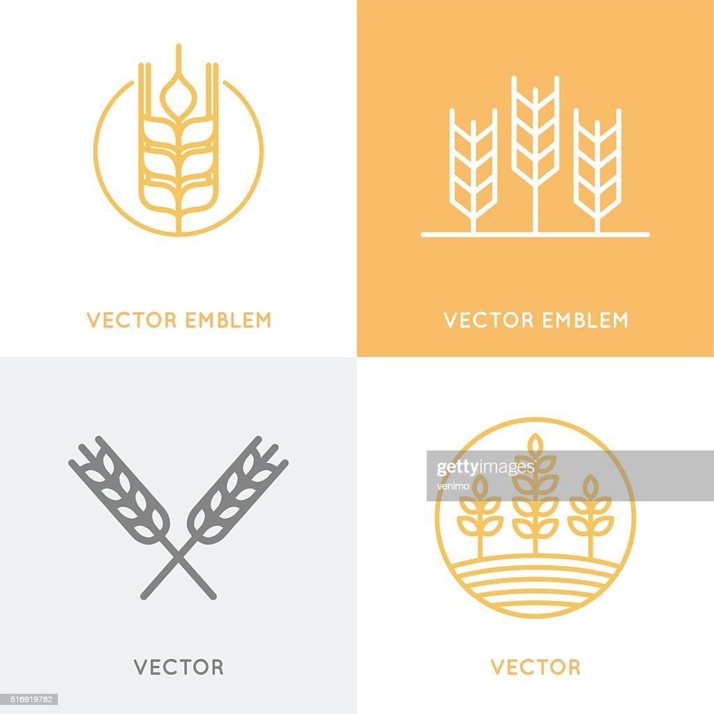 Vector set of icon design templates in trendy linear style