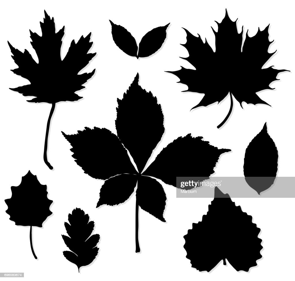Vector set of leaves silhouette on white background