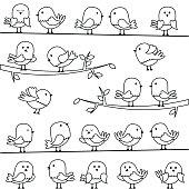 Vector Set of Line Art Cartoon Birds
