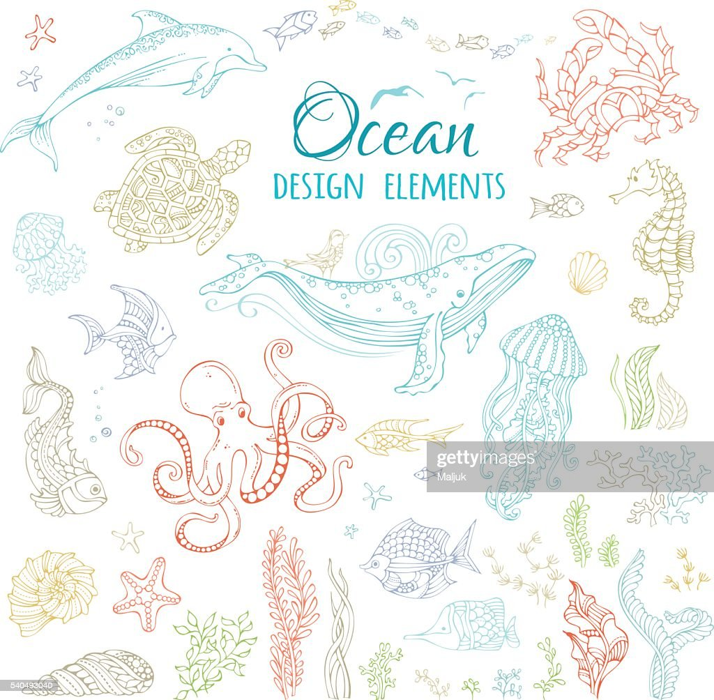 Vector set of ocean animals and plants.