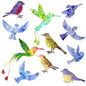 vector set of polygonal birds silhouettes
