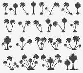 Vector set of solar palm beach in a dark color