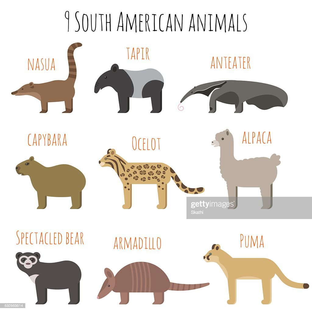 Vector set of South American animals icons.