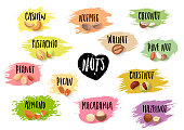 Vector set of trendy emblems of various nuts and black lettering on colorful blots.