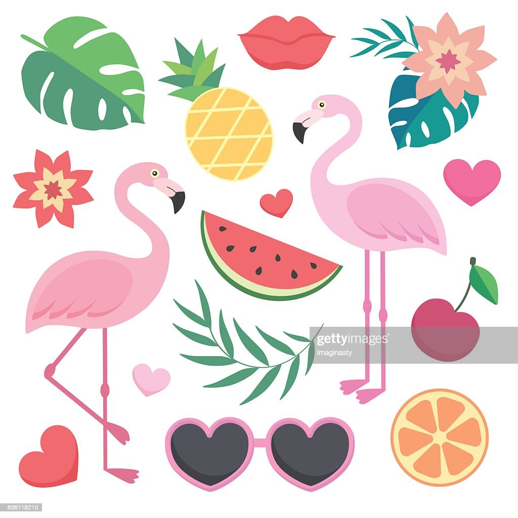 Vector set of tropical illustrations.