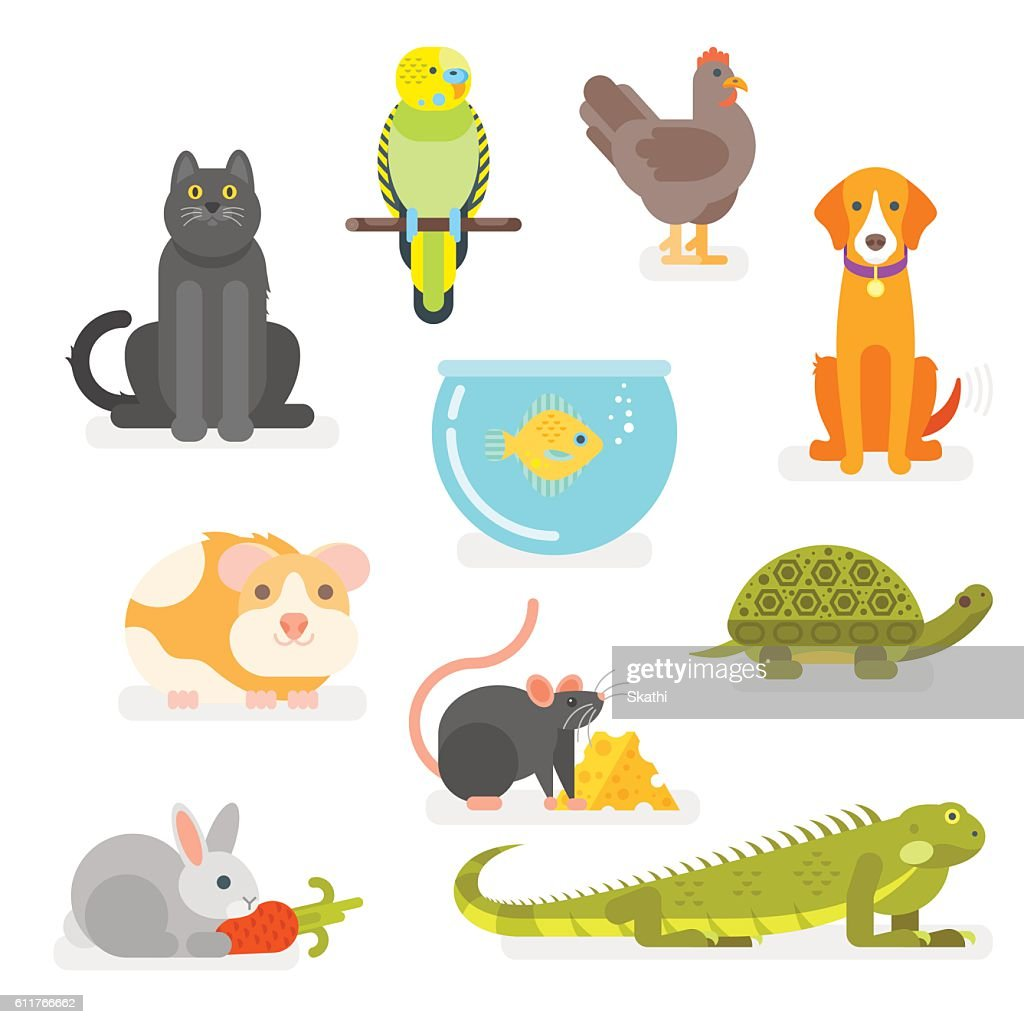 Vector set of various home pets