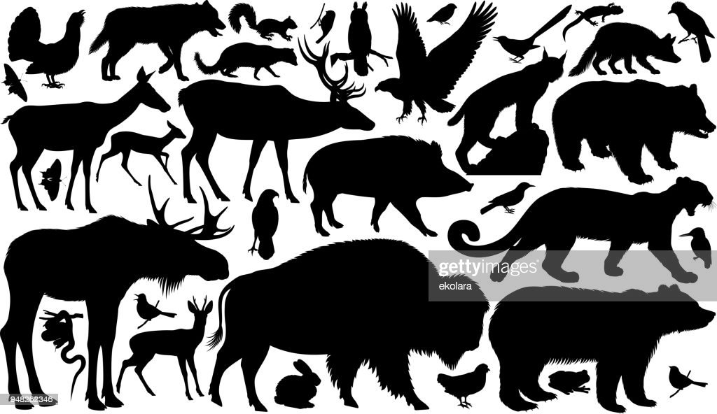 vector set of woodland animals silhouettes