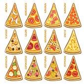 Vector set slices of italian Pizza